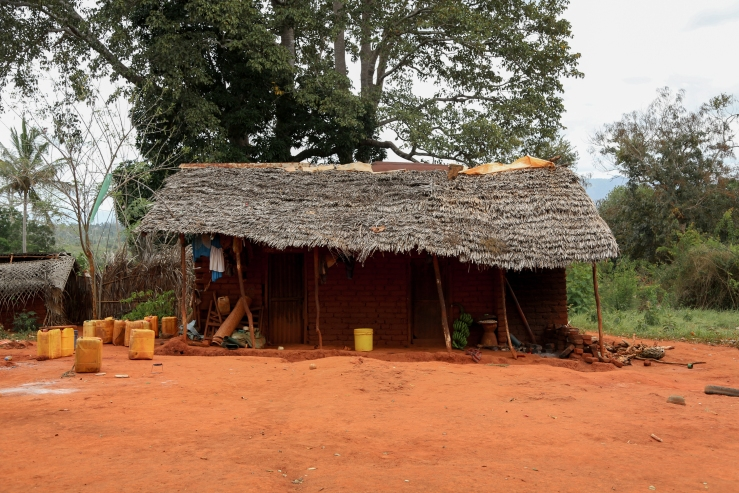 Mud houses Facade, TZ 2015